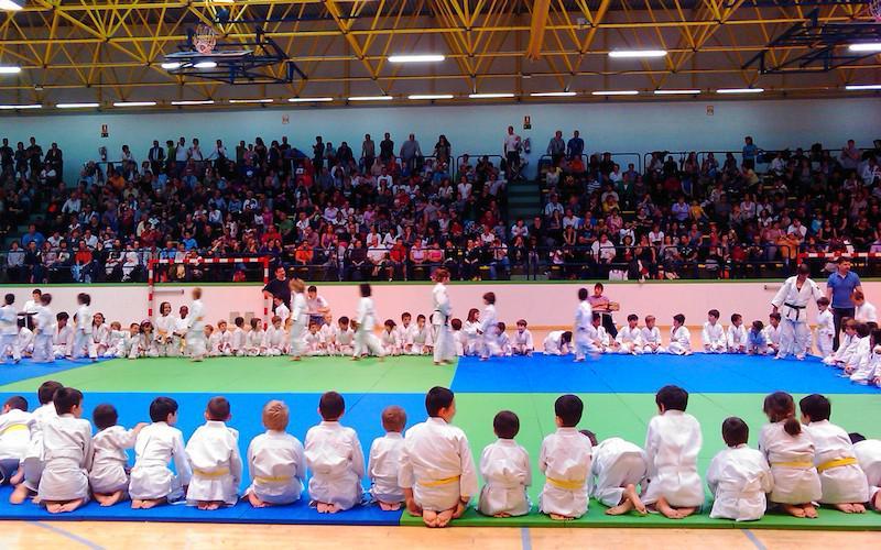 judo sayoa jaialdia